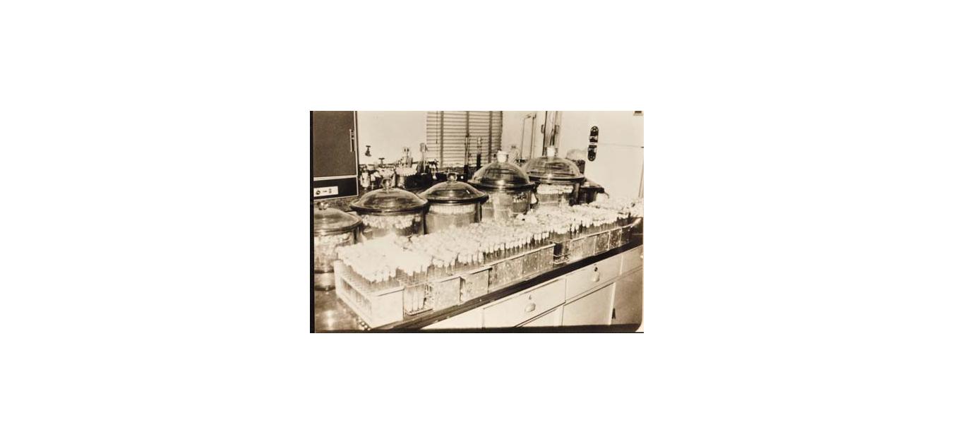 煉製研究所檢測設備