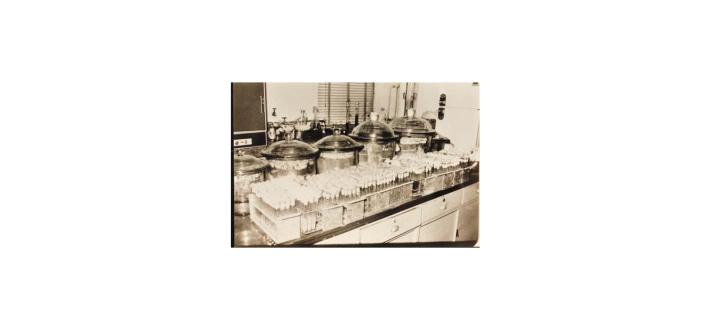 醱酵實驗室