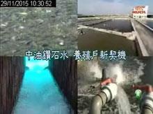 年代創新秘笈-中油鑽石水 養殖戶新契機