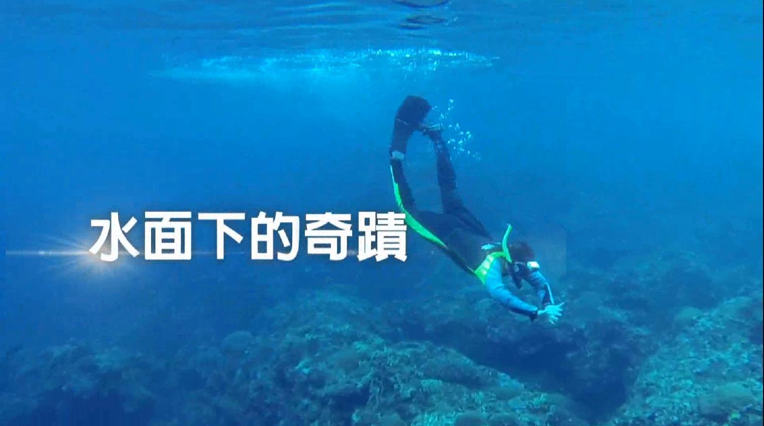台灣中油股份有限公司永安液化天然氣廠珊瑚生態影片完整版