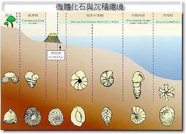 微體化石與沉積環境