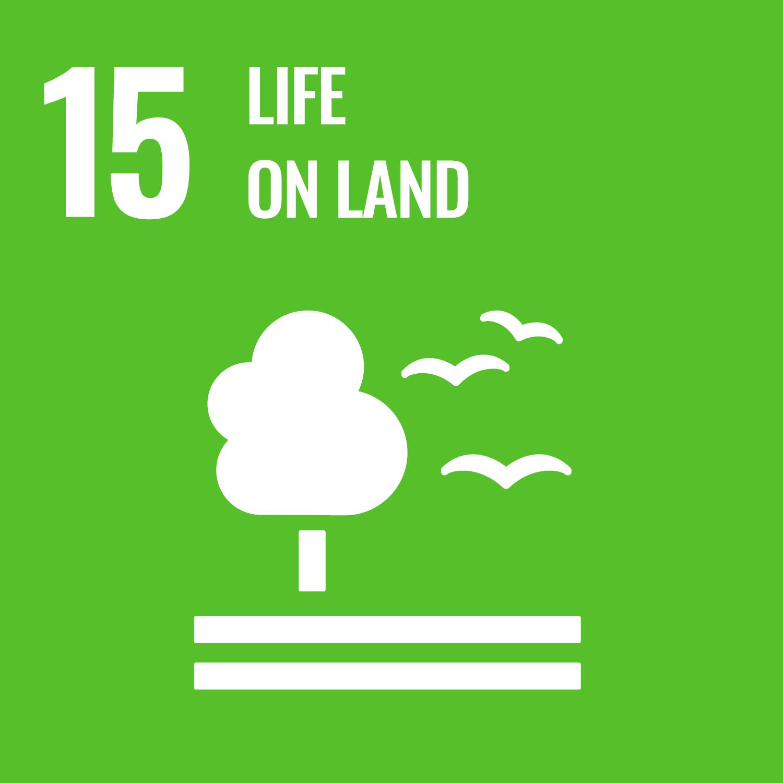 SDGs 15